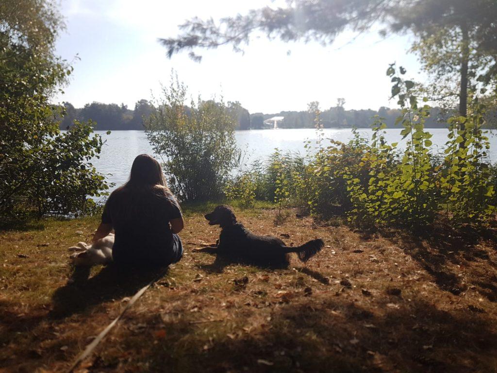 Aan het meer in Center Parcs